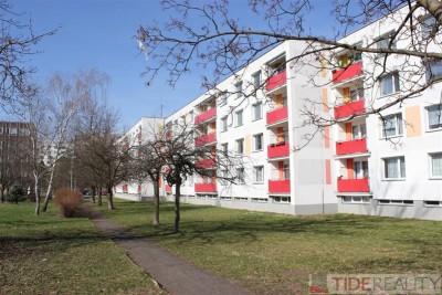 Slunný byt 2+1, OV, Milady Horákové, Hradec Králové